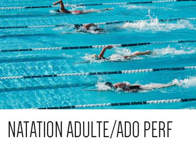 Natation adulte/ados perf